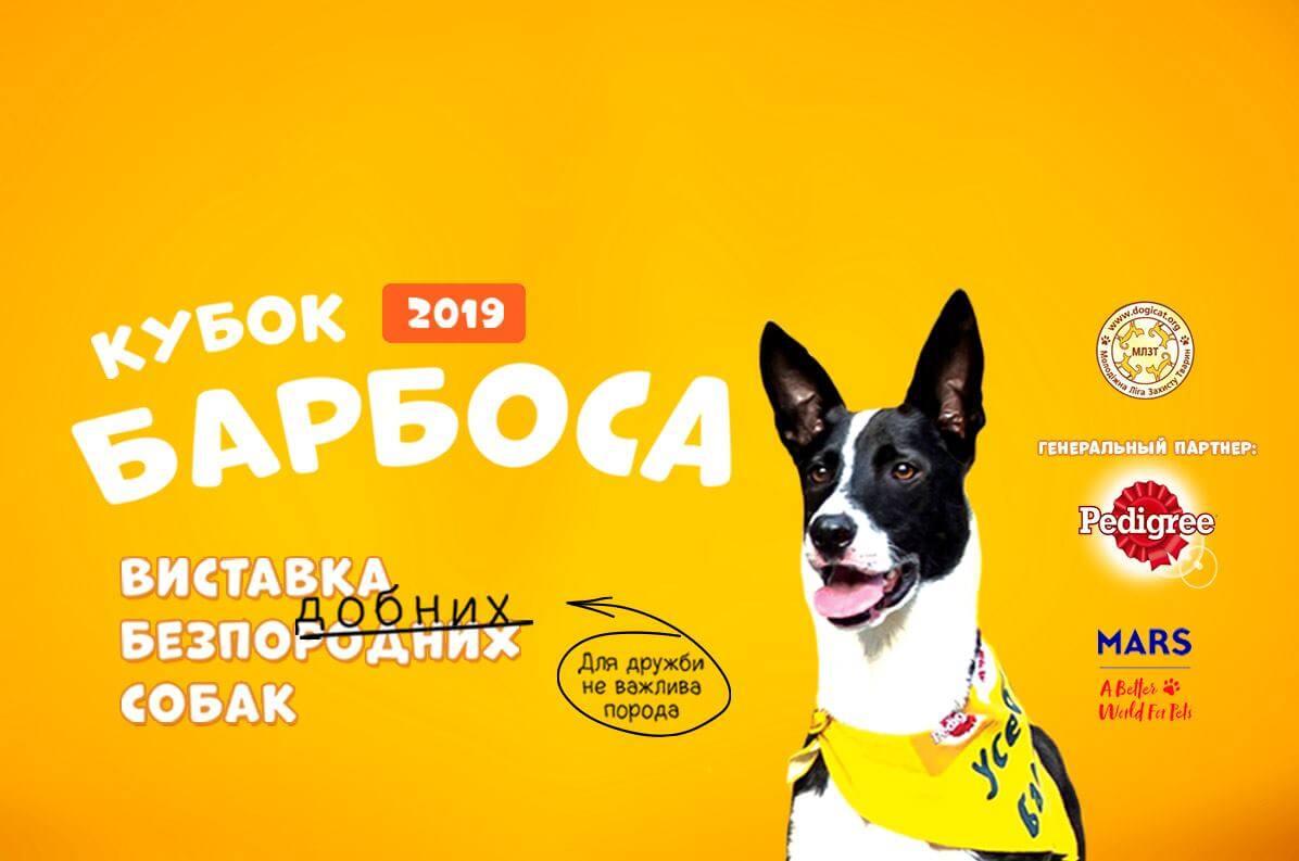Кубок Барбоса 2019
