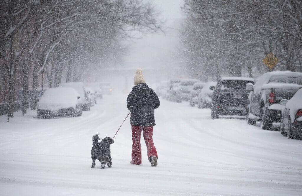 Найближчими днями в Україні очікуються рясні снігопади, на дорогах ожеледиця